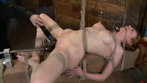 Brutal bondage in the company of babe